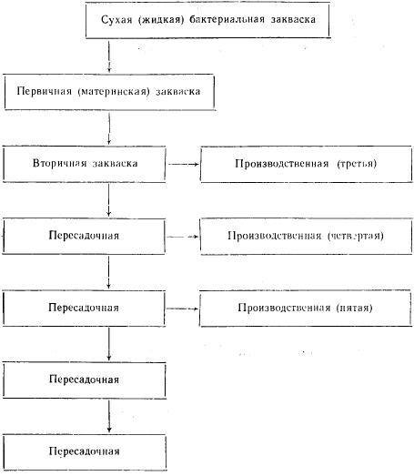Схема приготовления закваски